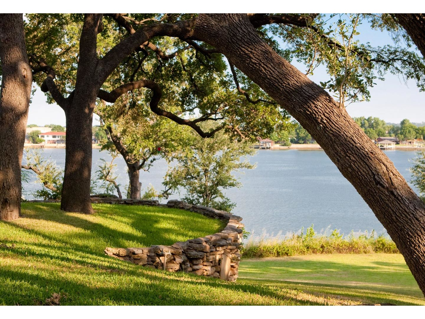 A tree next to a body of water at Inn on Lake Granbury.