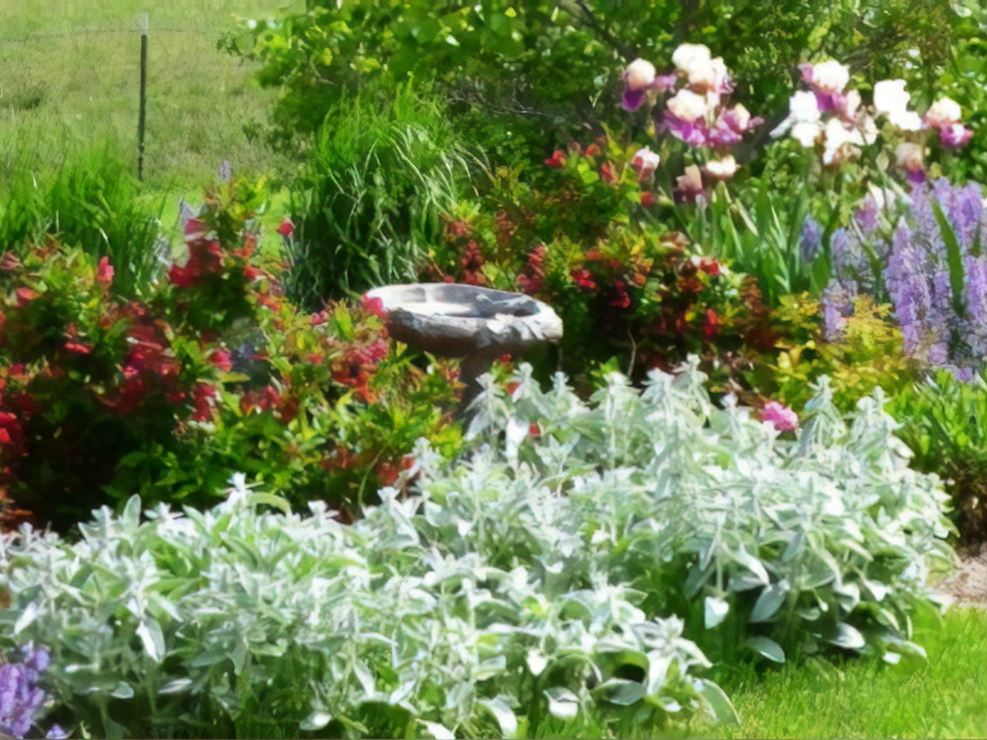 A close up of a flower garden at Longview Farms Bed & Breakfast Carriage House.