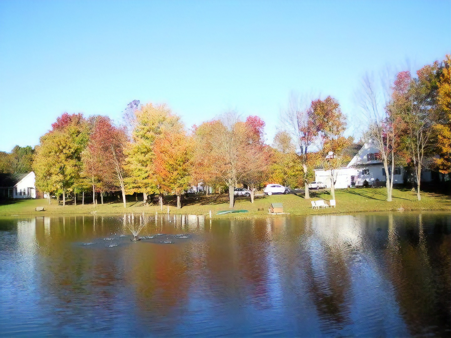 A body of water surrounded by trees at Bear Creek Farm Bed and Breakfast .