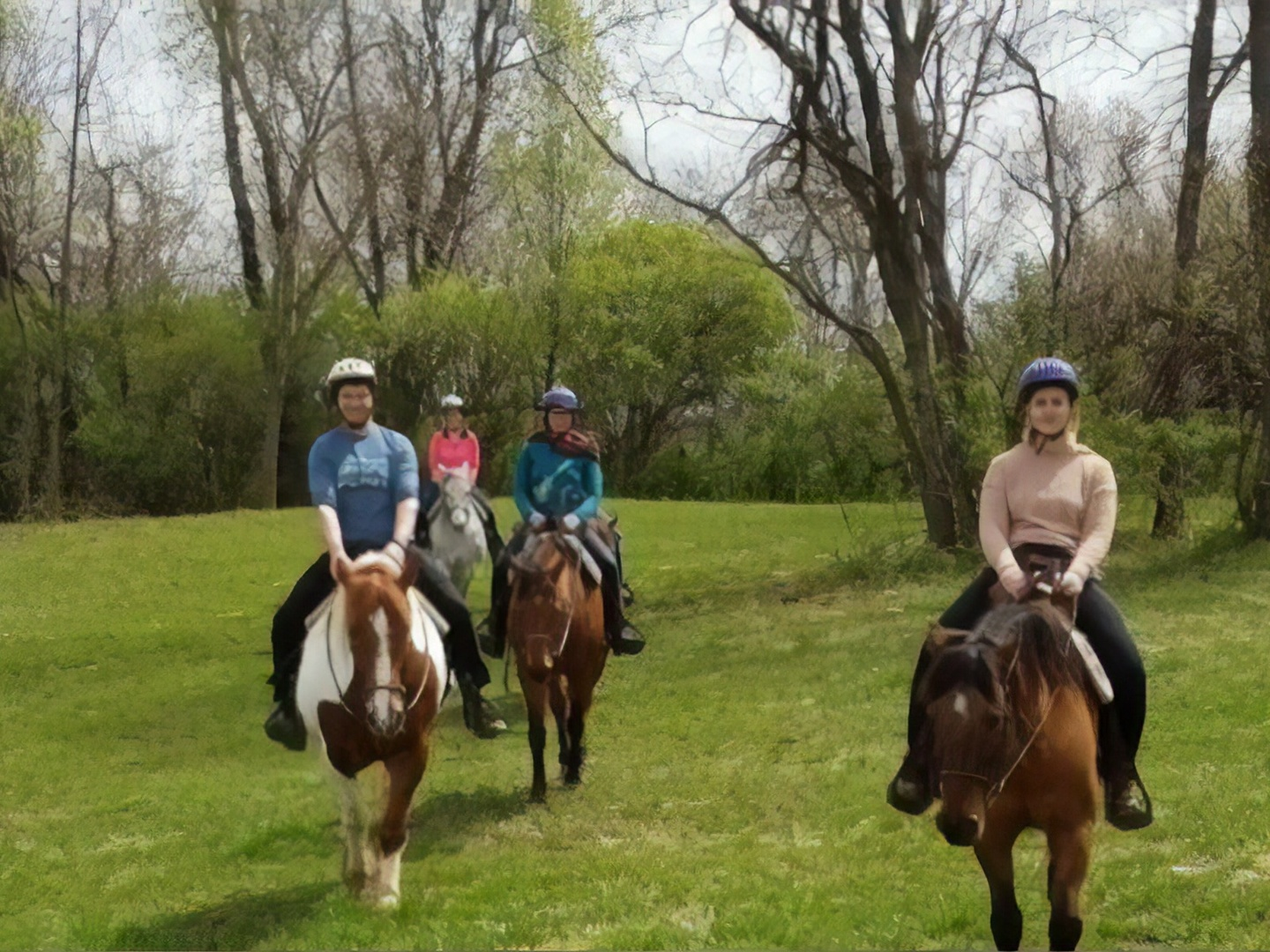 A group of people riding on the back of a horse at First Farm Inn.
