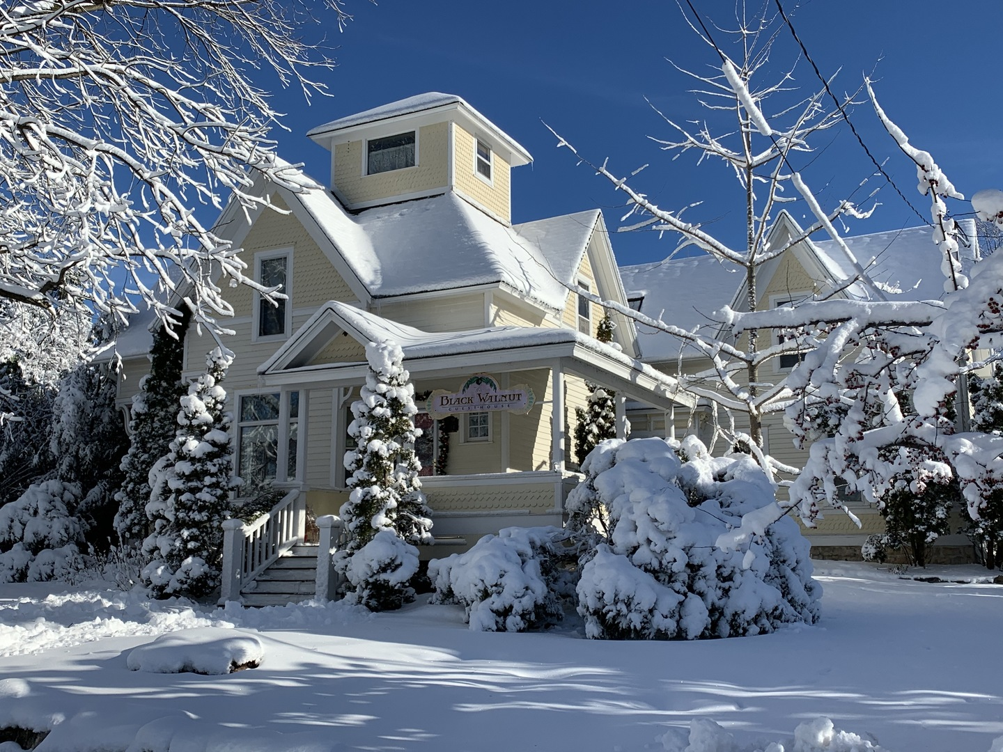 A house covered in snow at The Black Walnut Guest House Bed and Breakfast.