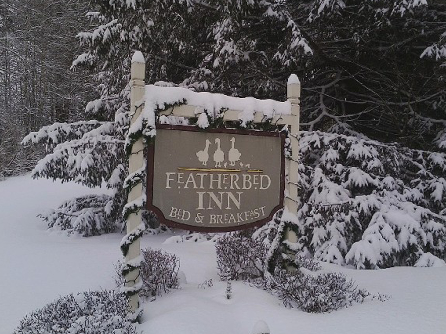 A sign on the side of a snow covered forest at Featherbed Inn.