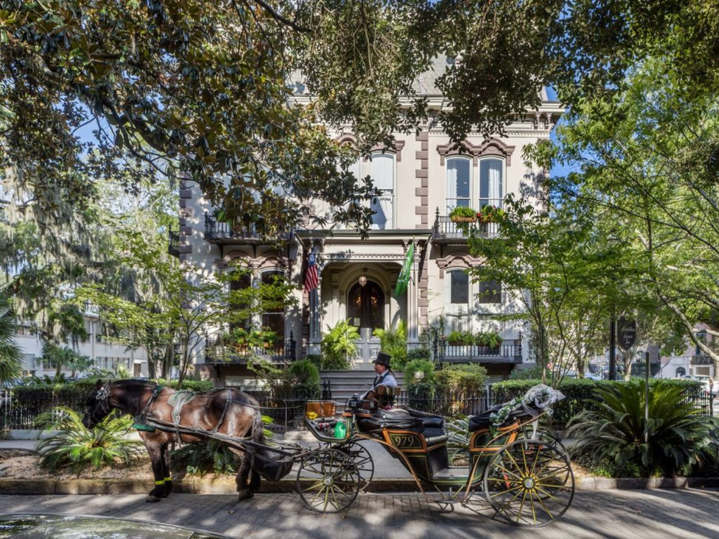 A close up of a horse drawn carriage in front of a tree at Hamilton-Turner Inn.