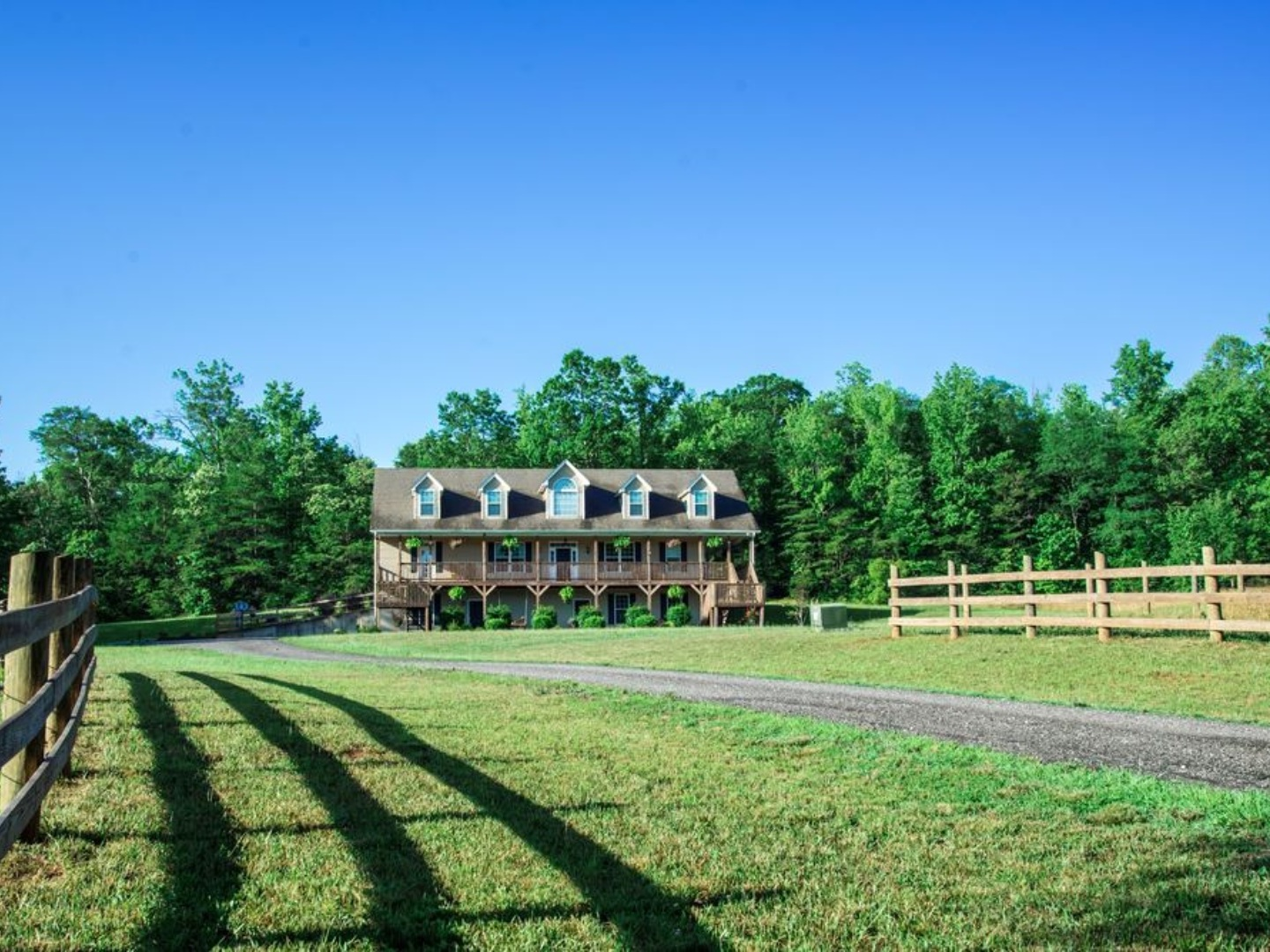 A large green field with trees in the background at Glassy View Bed and Breakfast.