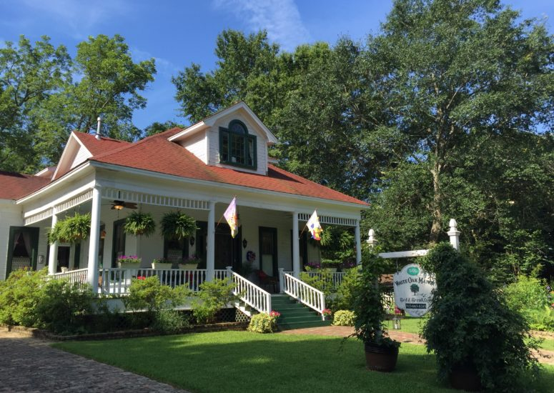 A house with trees in the background at White Oak Manor Bed and Breakfast.