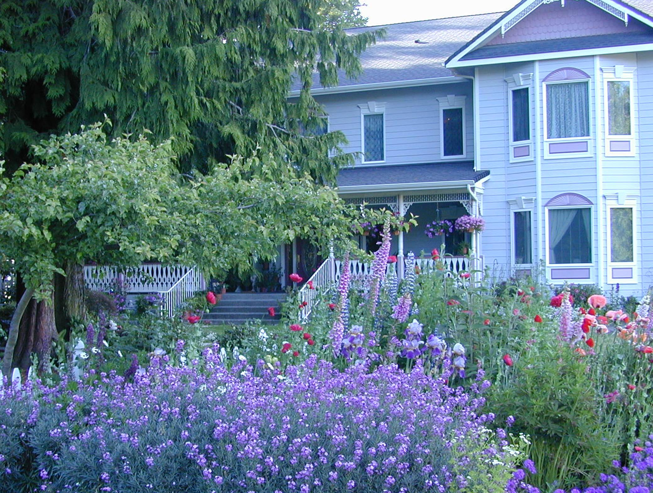 A close up of a flower garden in front of a house at Sea Cliff Gardens Bed & Breakfast.