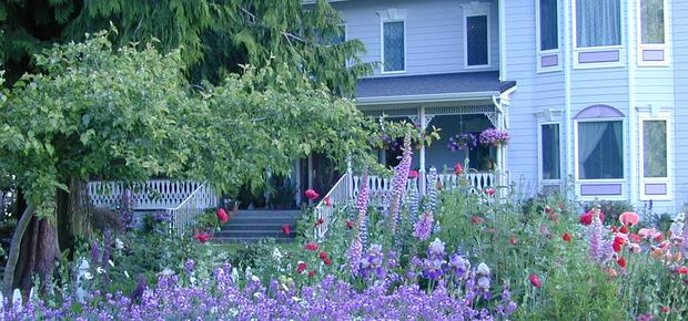 Sea Cliff Gardens Bed & Breakfast