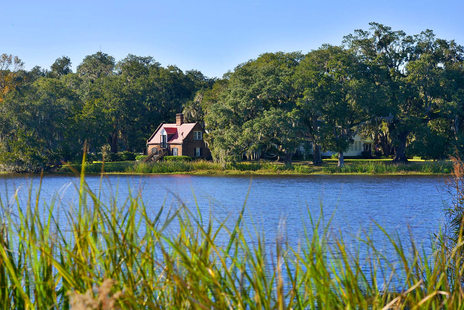 A body of water surrounded by trees at Mansfield Plantation Bed & Breakfast.