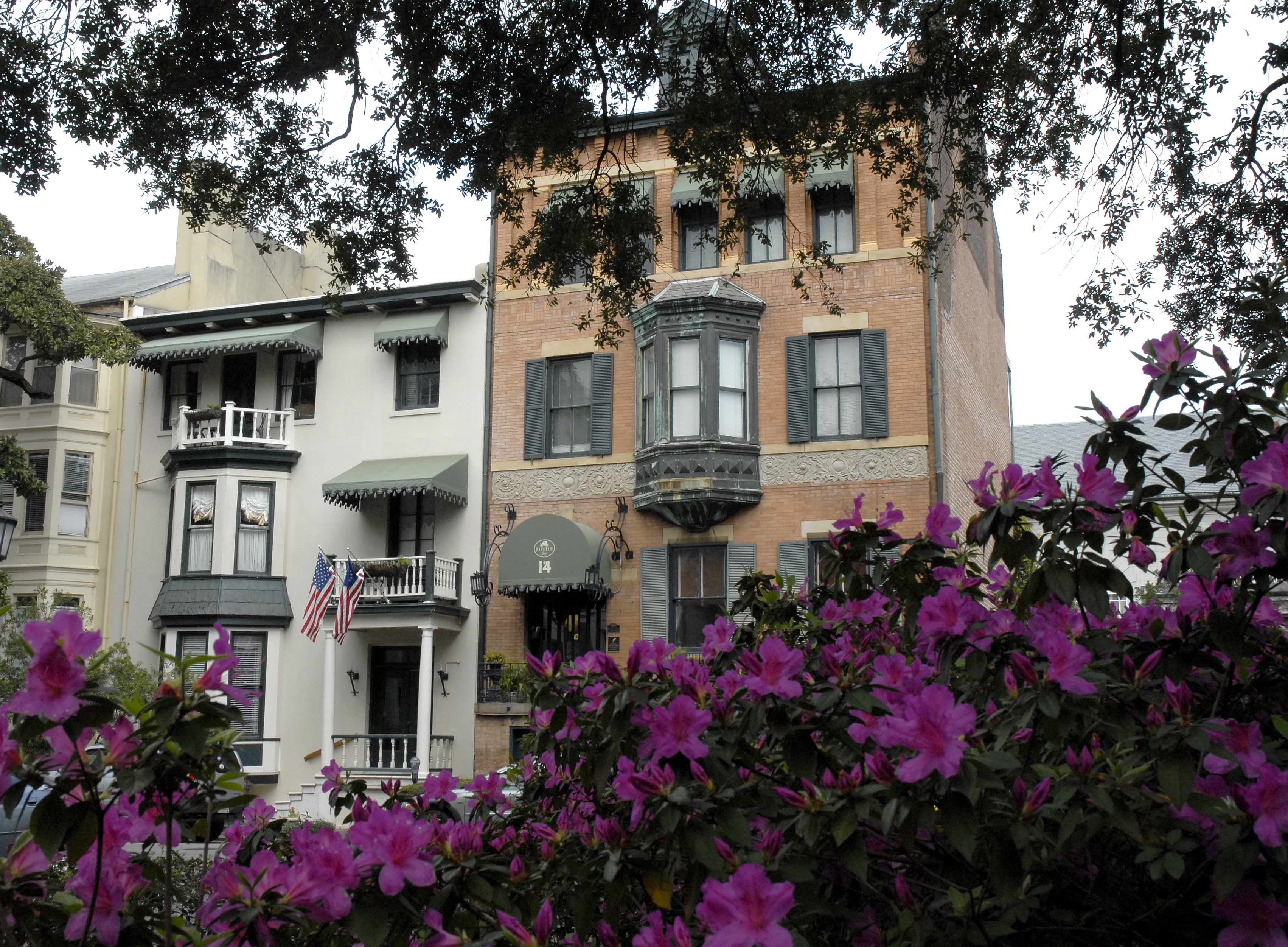 A pink flower is standing in front of a building at Foley House Inn.