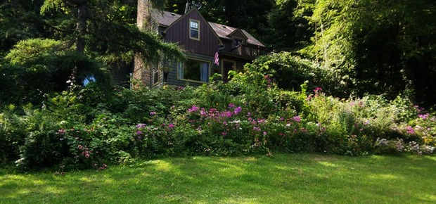 Contented Cottage Bed & Breakfast