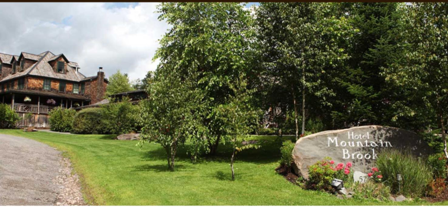 A close up of a garden at Mountain Brook.