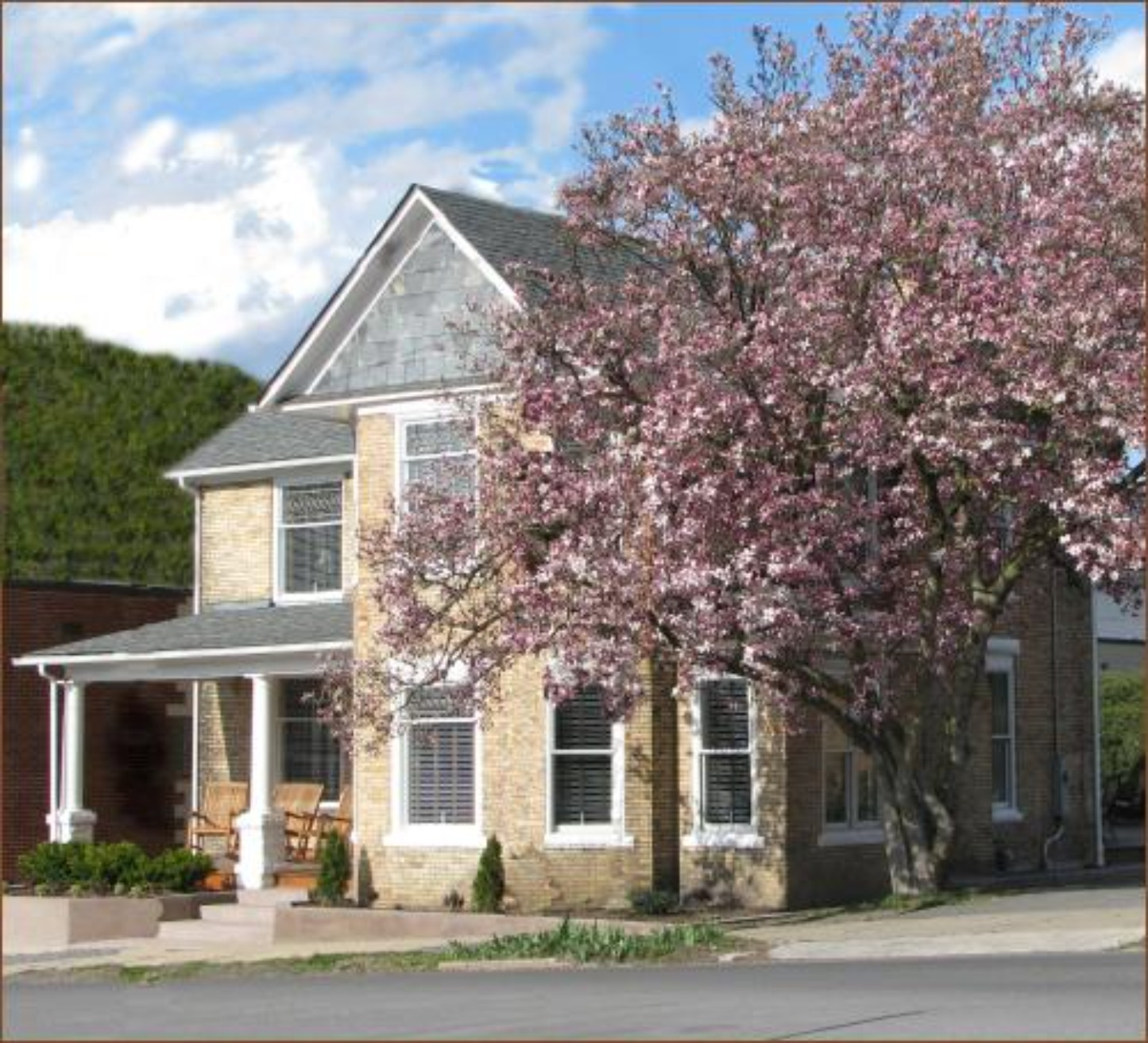 A tree in front of a building at The Guest House on Court House Square.