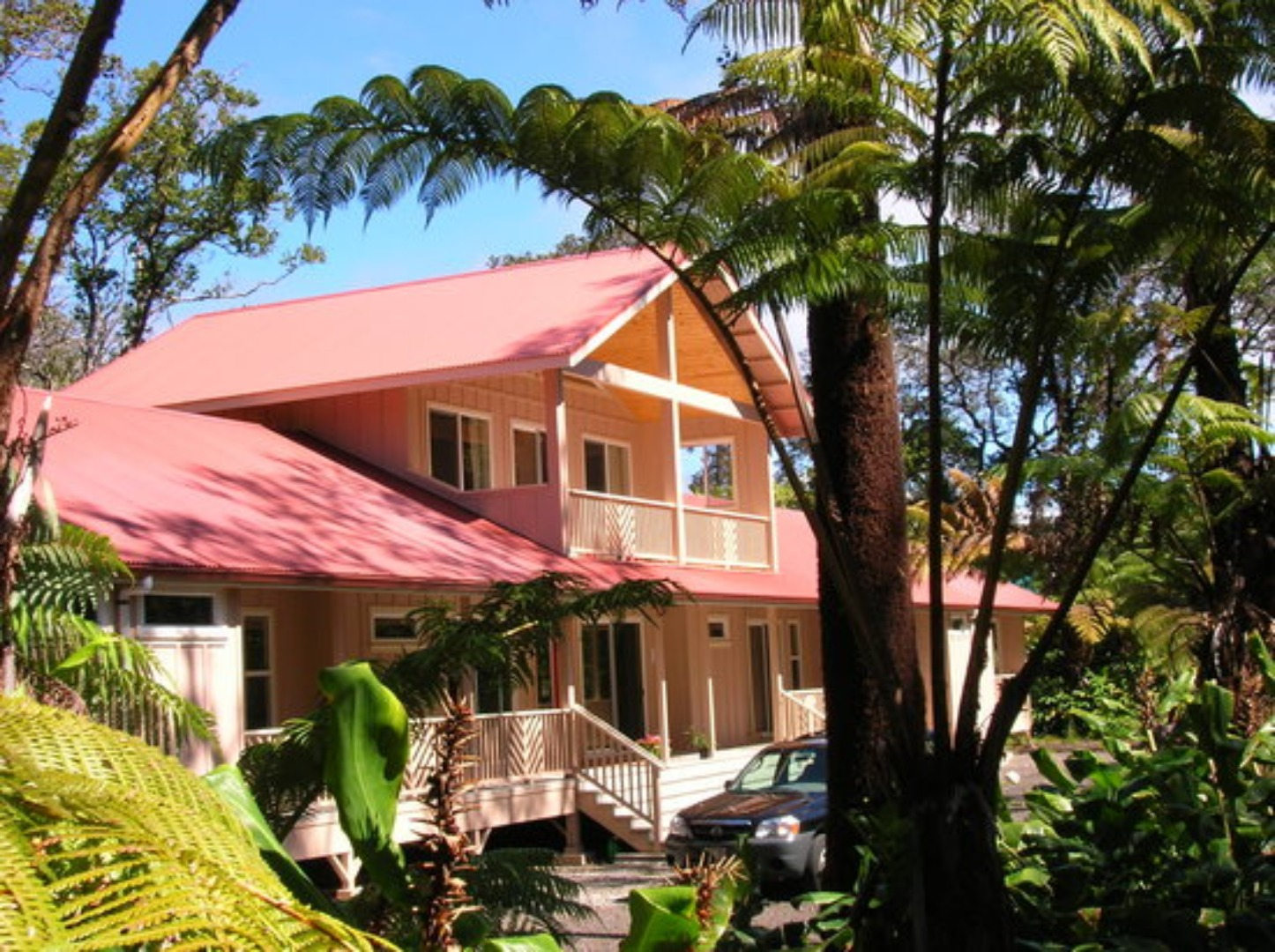 A group of palm trees in front of a house at Volcano Forest Inn.