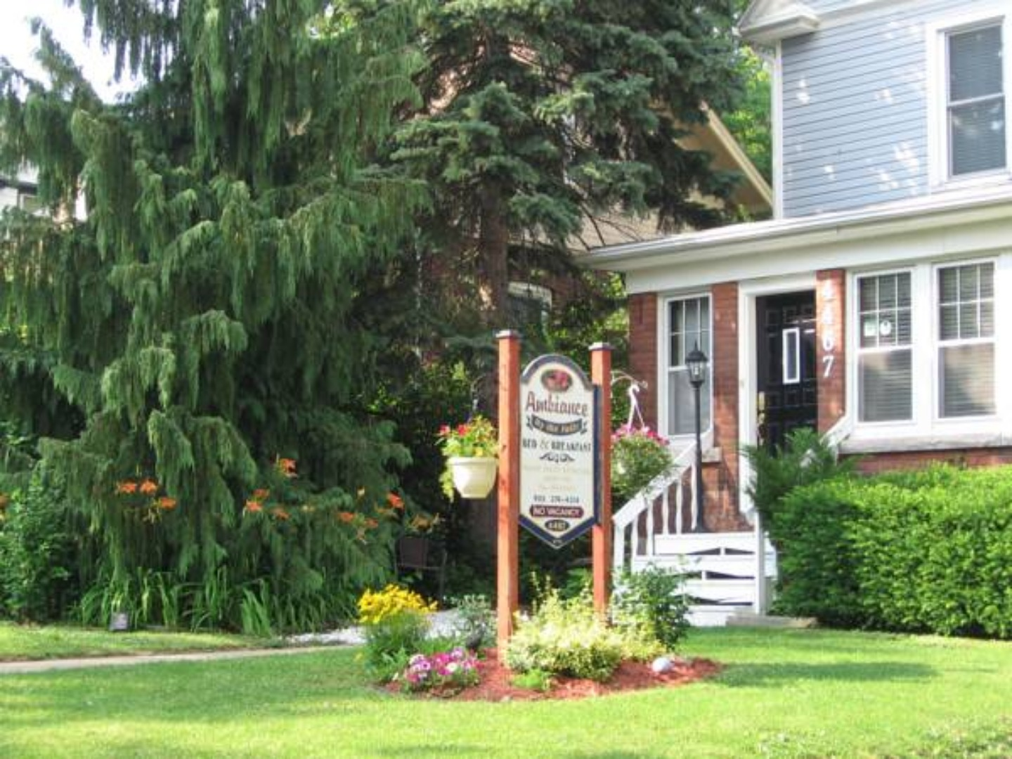 A tree in front of a building at Ambiance by the Falls Bed and Breakfast.