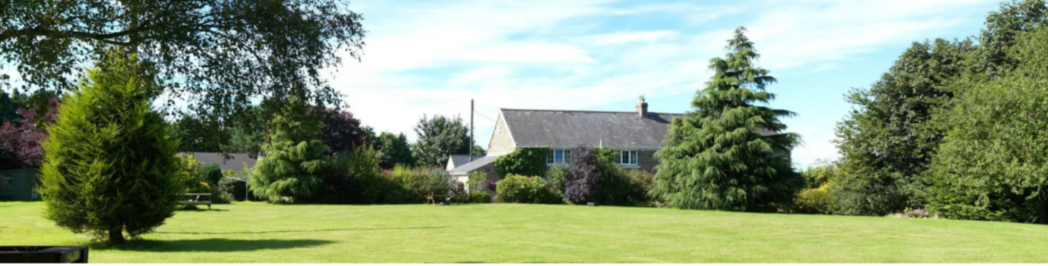 A person standing on a lush green field at East Byermoor Guest House.