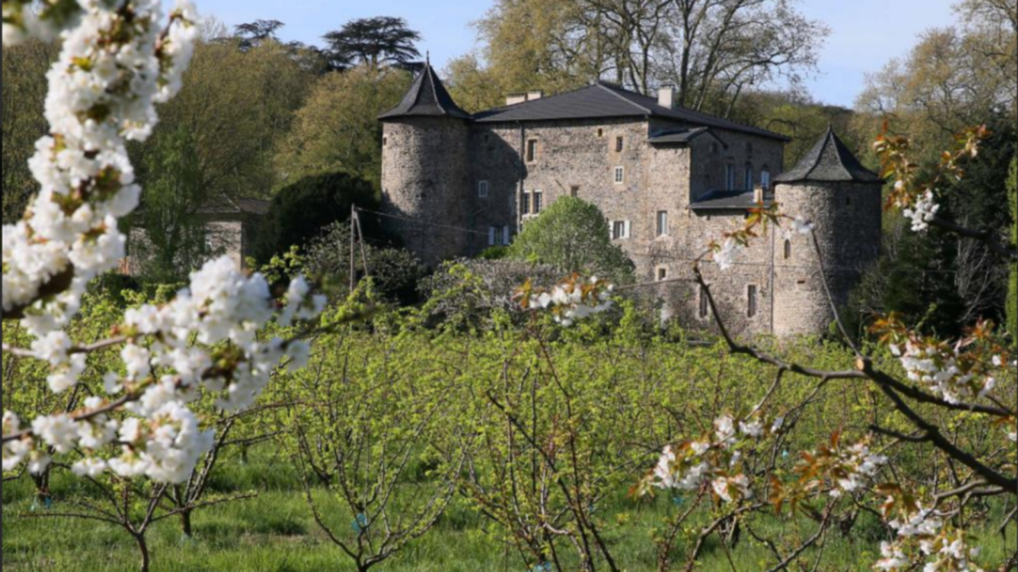 A castle on top of a grass covered field at Domaine La Bonne Etoile.