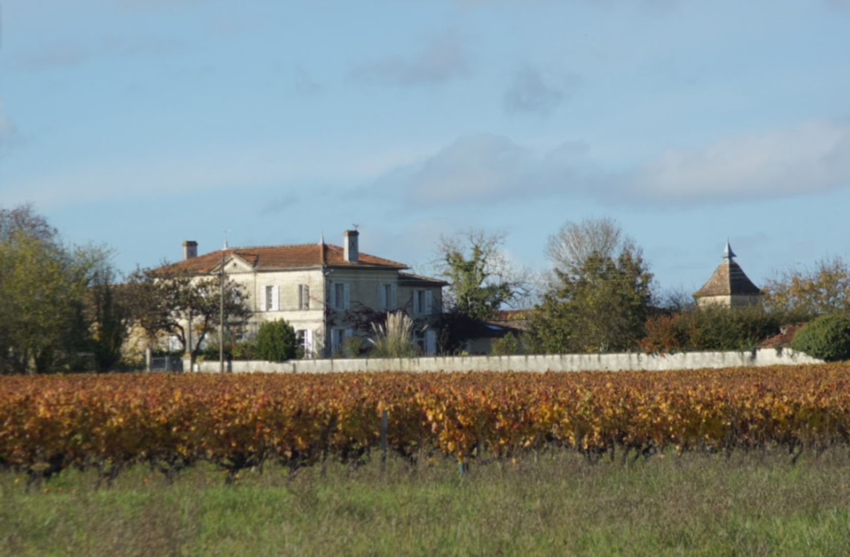A tree in front of a house at Coté Bordeaux.