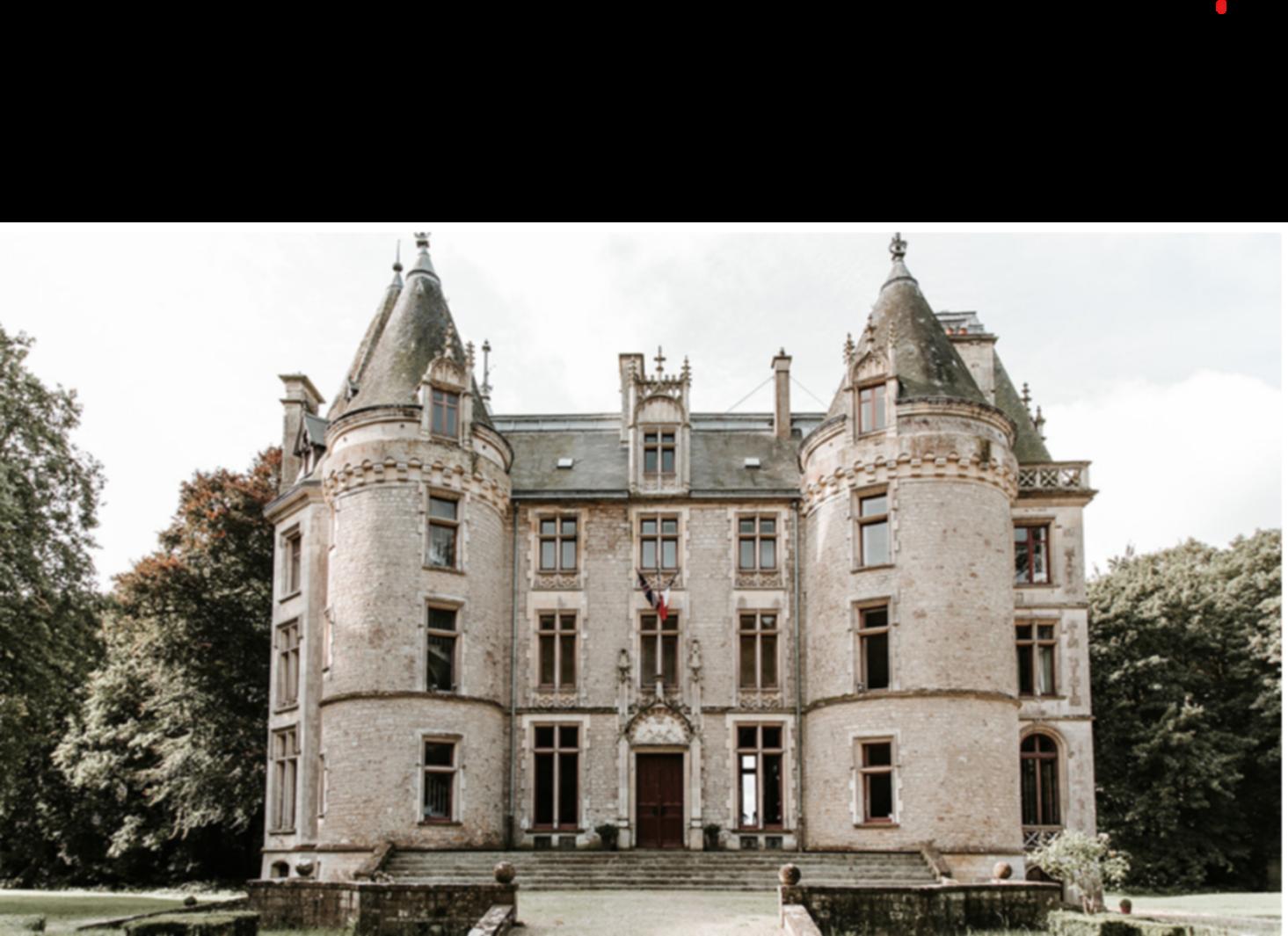 A castle on top of a building at Château de l'Isle Marie.