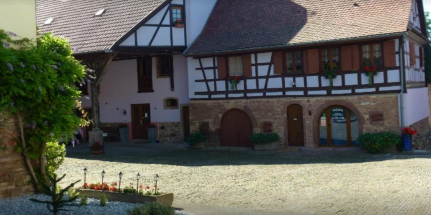 A house with trees in the background at Ferme Martzloff.