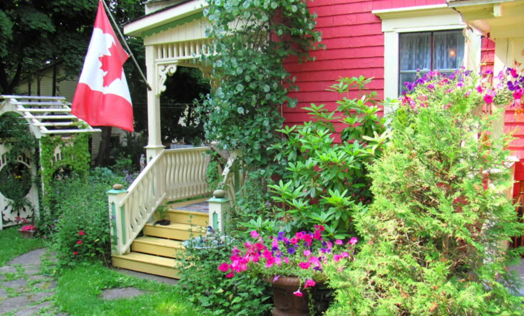 A colorful flower garden in front of a house at Chambers Guest House.