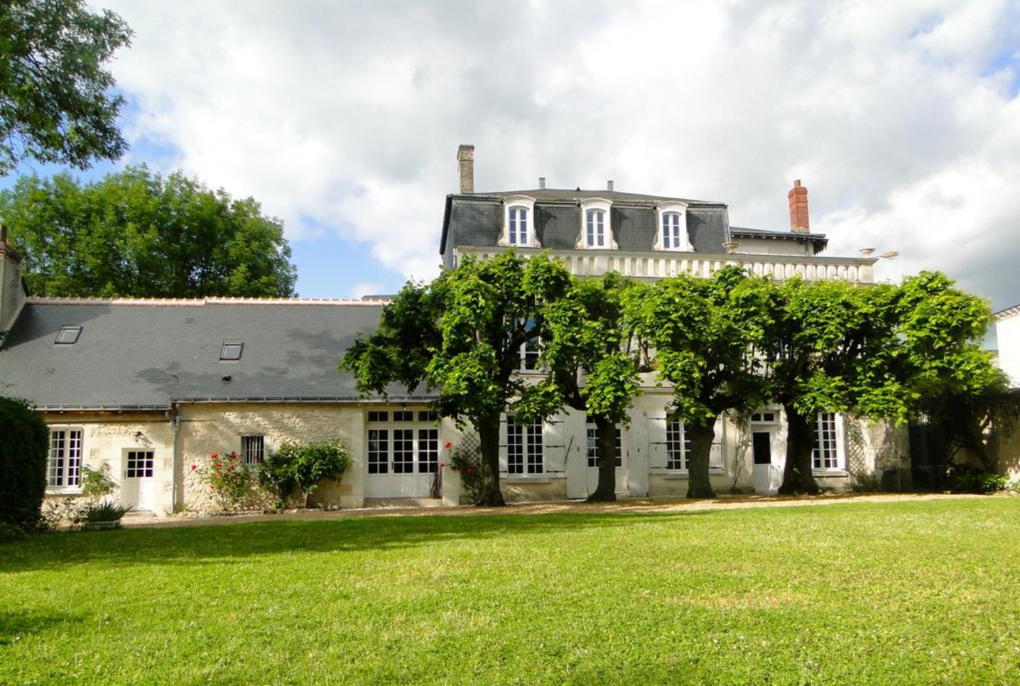 A tree in front of a house at la Héraudière.