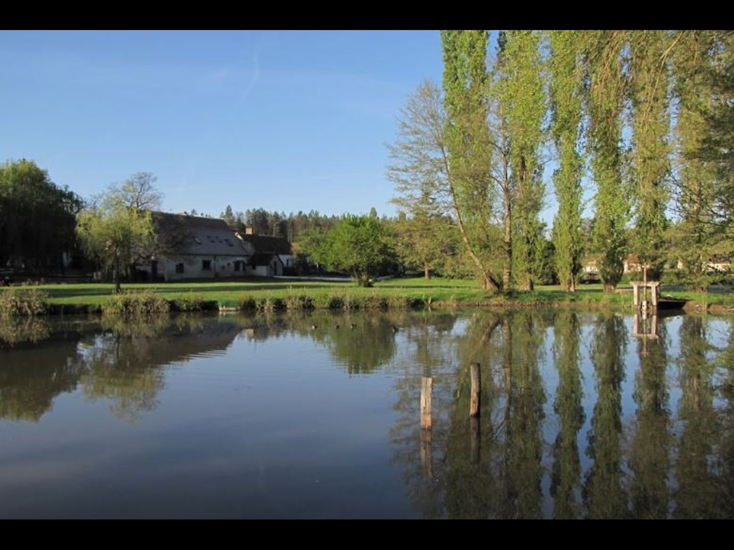 A body of water surrounded by trees at La Grange aux Herbes Chambres d'hôtes Chambord.