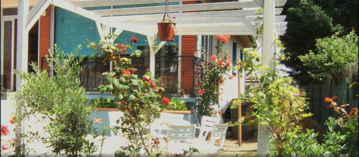 A close up of a garden at Le Clos Albertine.
