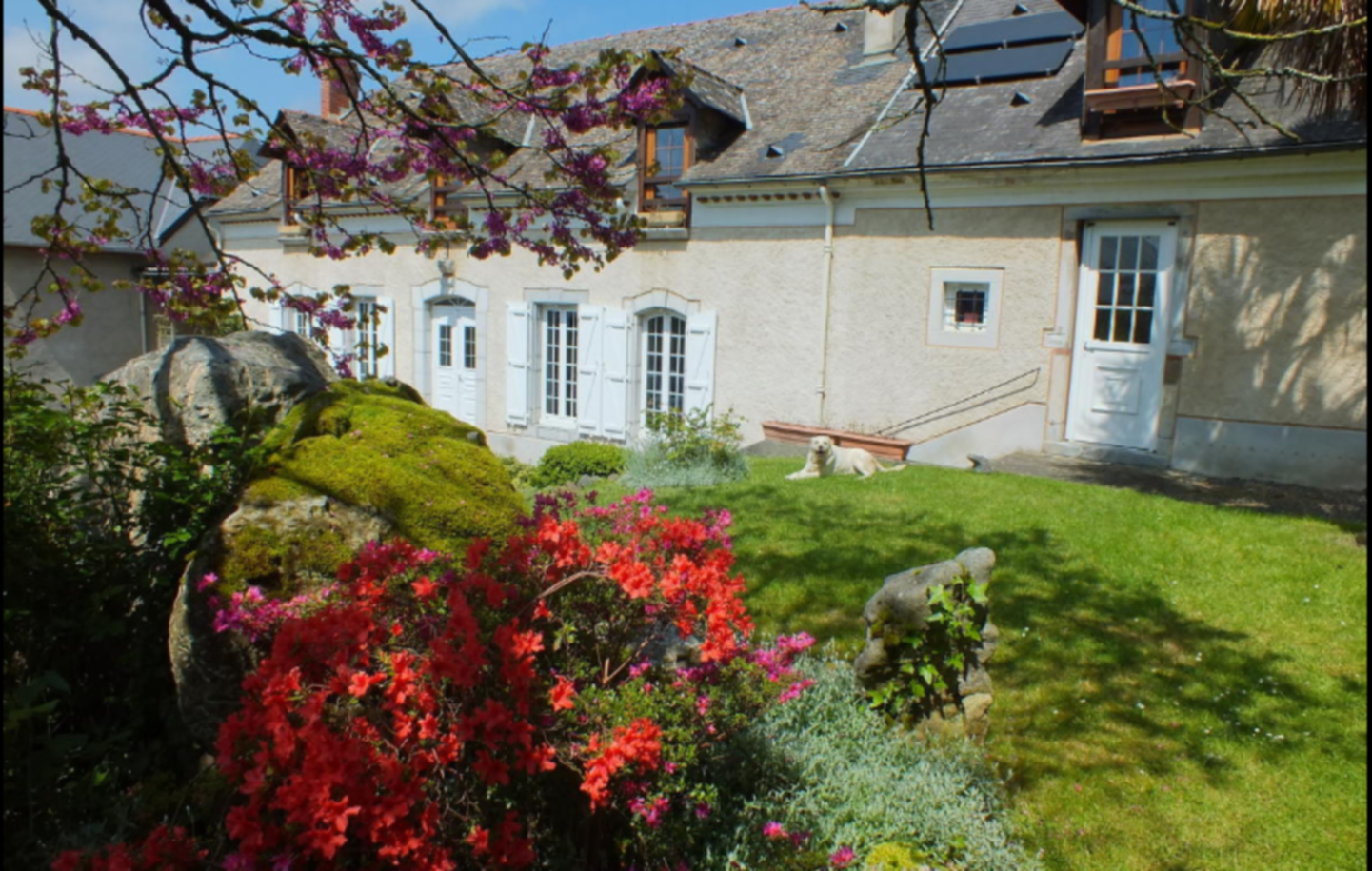 A close up of a flower garden in front of a house at Anousta.