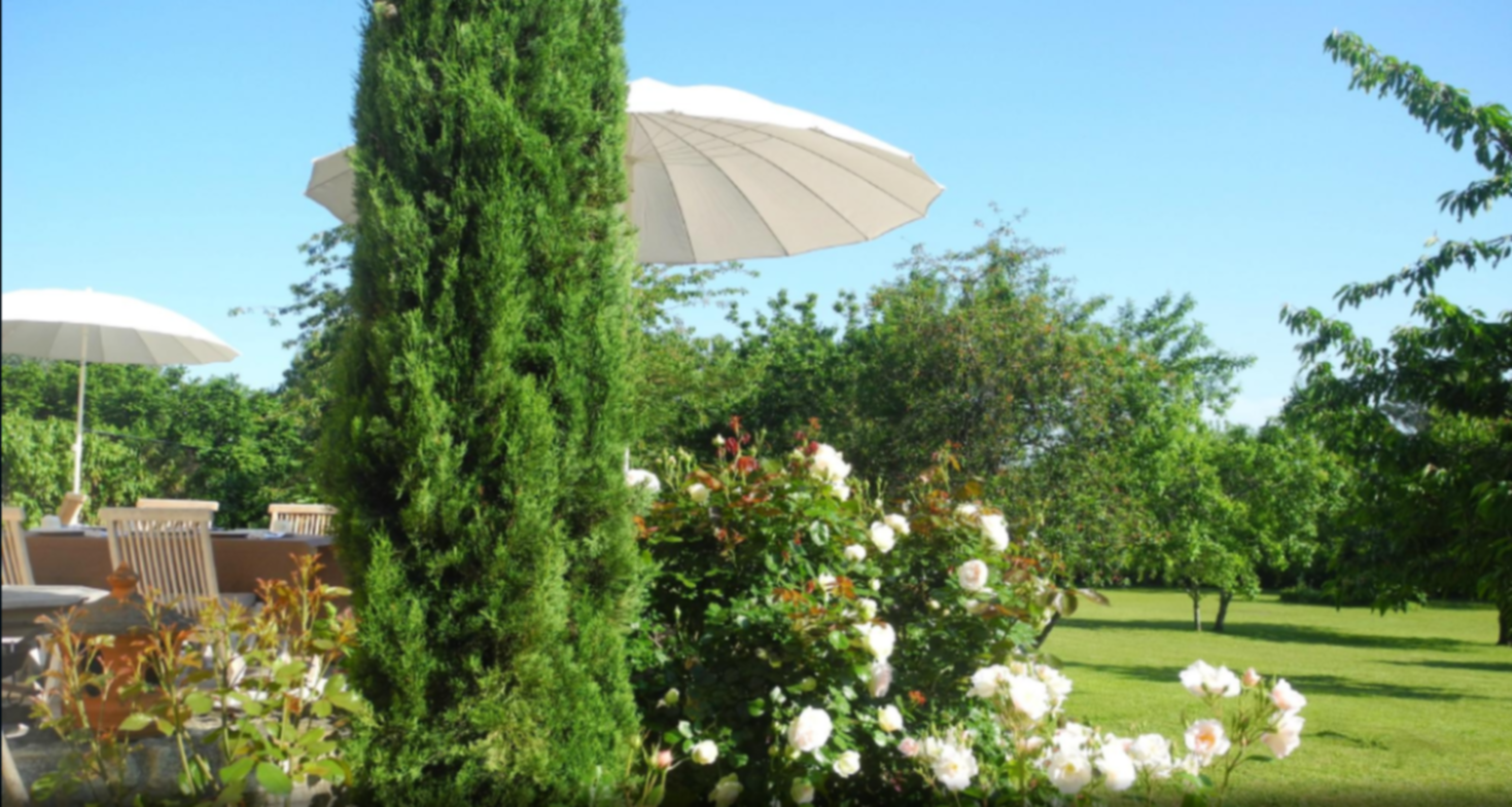 A close up of an umbrella on a sunny day at Les Pascotines.