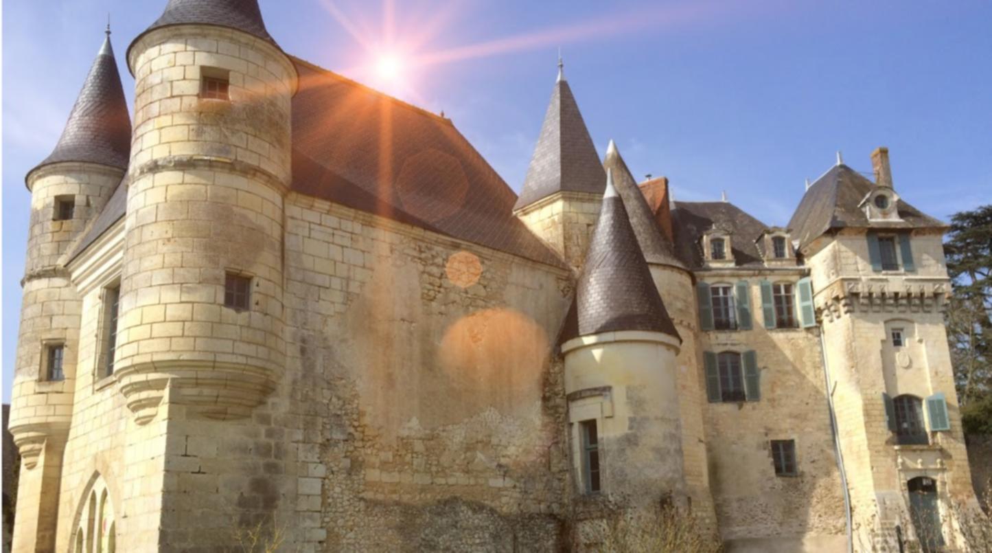 A castle on top of a building at Chateau de la Celle Guenand.