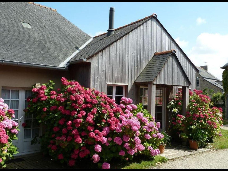 A pink flower is standing in front of a building at  Bienvenue à la ville es gris.