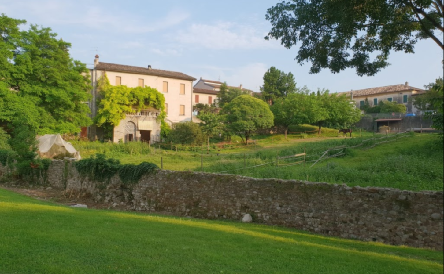 A close up of a lush green field at Casa in Castello.