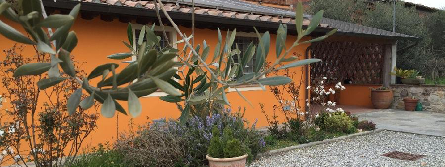 A close up of a garden at Affittacamere Corte Capitani.