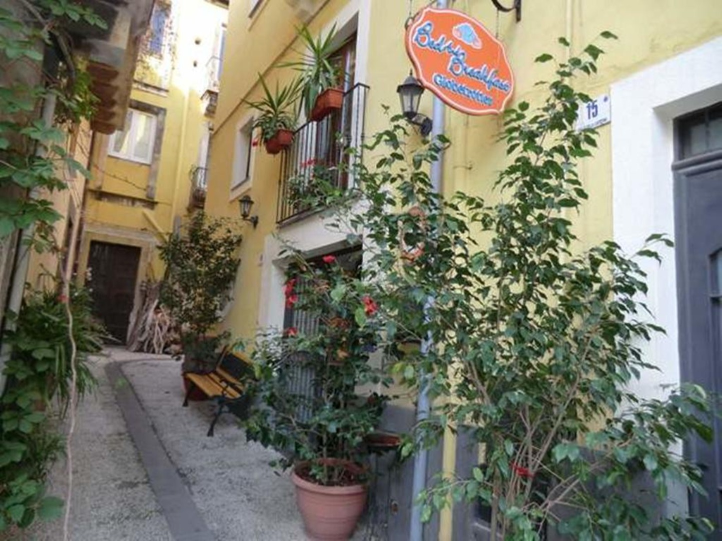 A tree in front of a building at Globetrotter Catania.