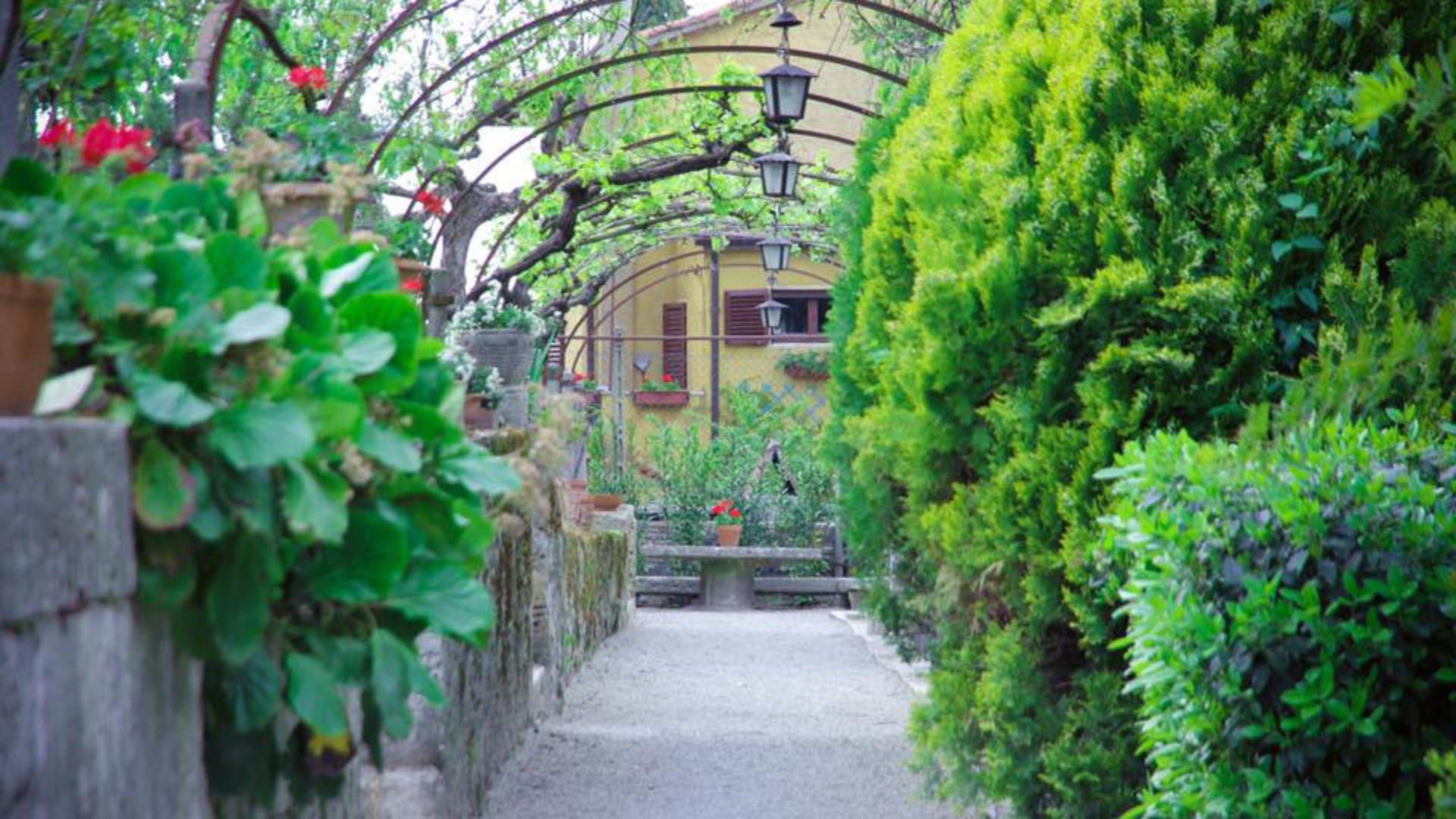 A plant in a garden at Residenza Dei Ricci.