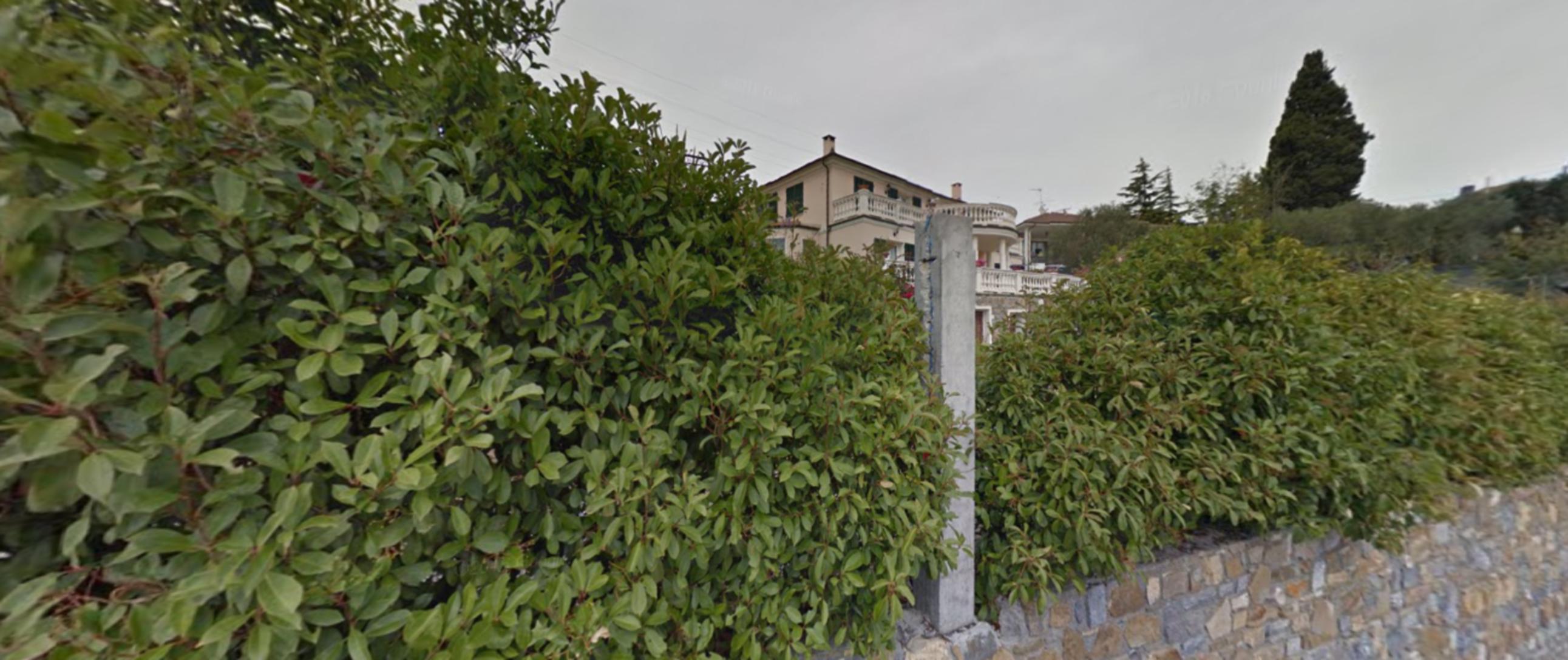 A close up of a garden at B & B Villa Isabella.