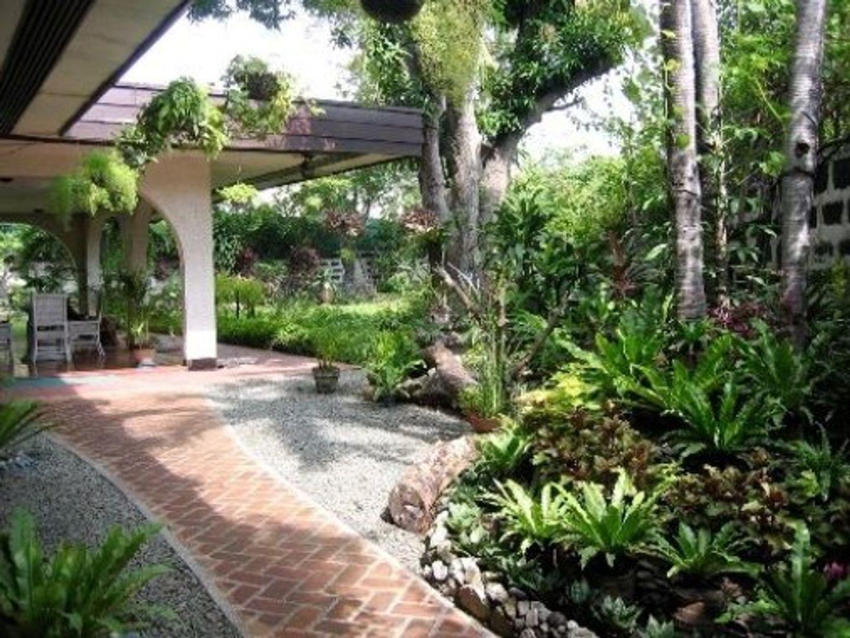 A plant in a garden at Casa Joaquin BnB.