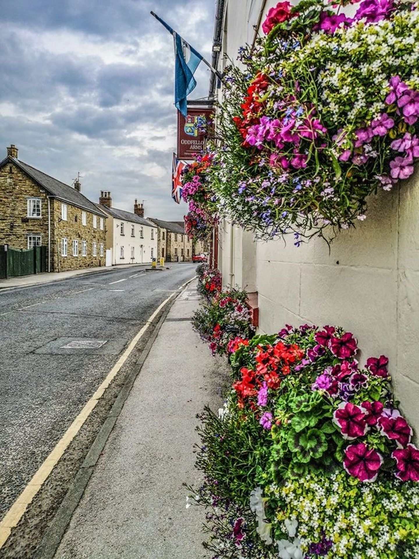 A close up of a flower garden in front of a building at The Oddfellows Arms.