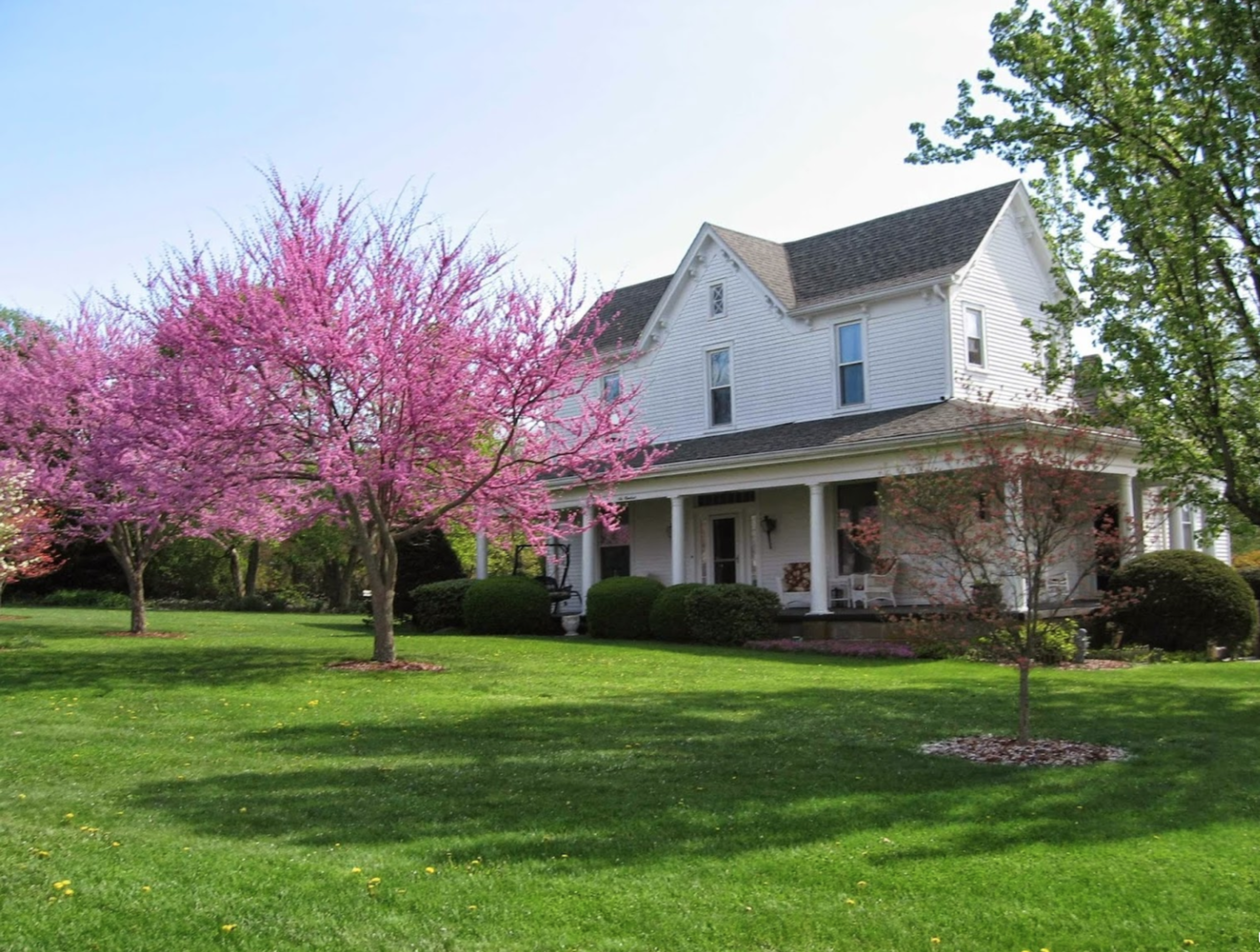 A large lawn in front of a house at 1898 Red Bud.