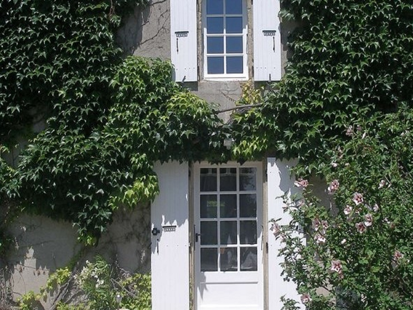 A house with bushes in front of a window at Le Mas d'Escampette.