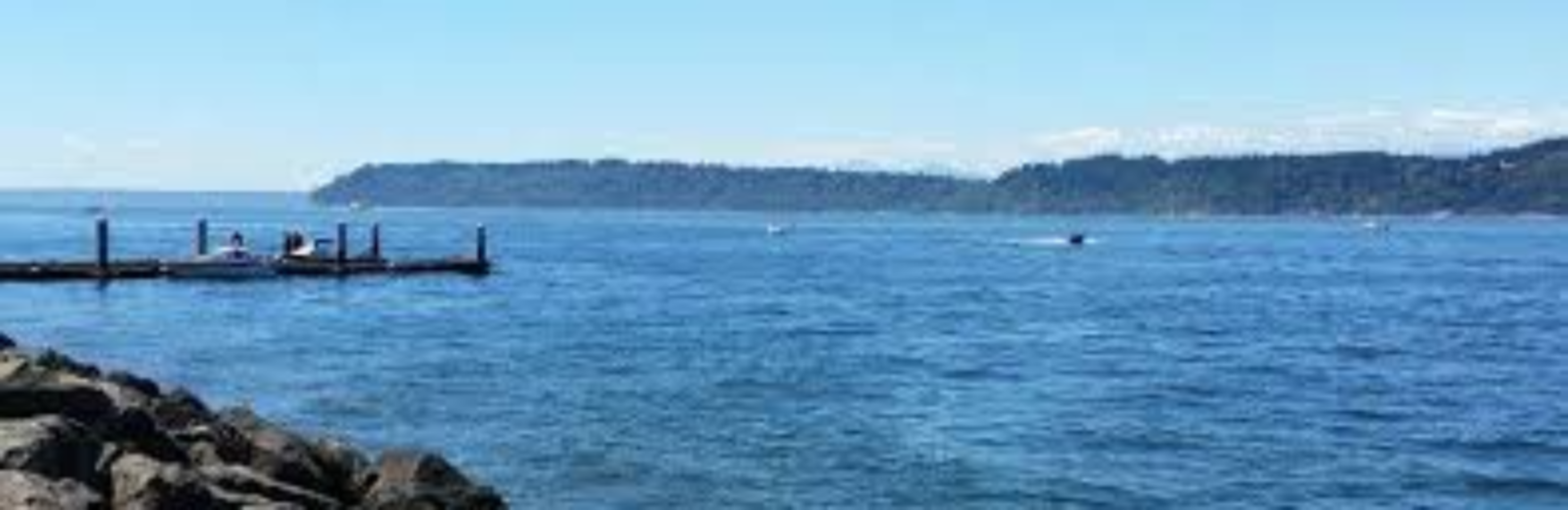 A large body of water at By the Bay B & B and Guest Cottage.