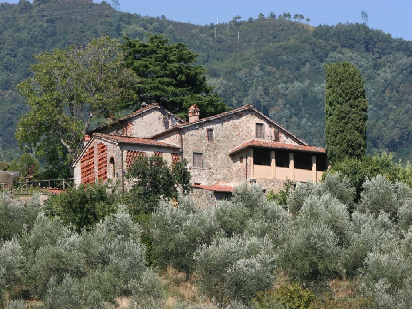 A house with bushes in the background at Loggia del Centone.
