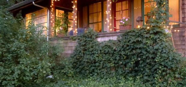 A Calistoga Enchanted Cottage
