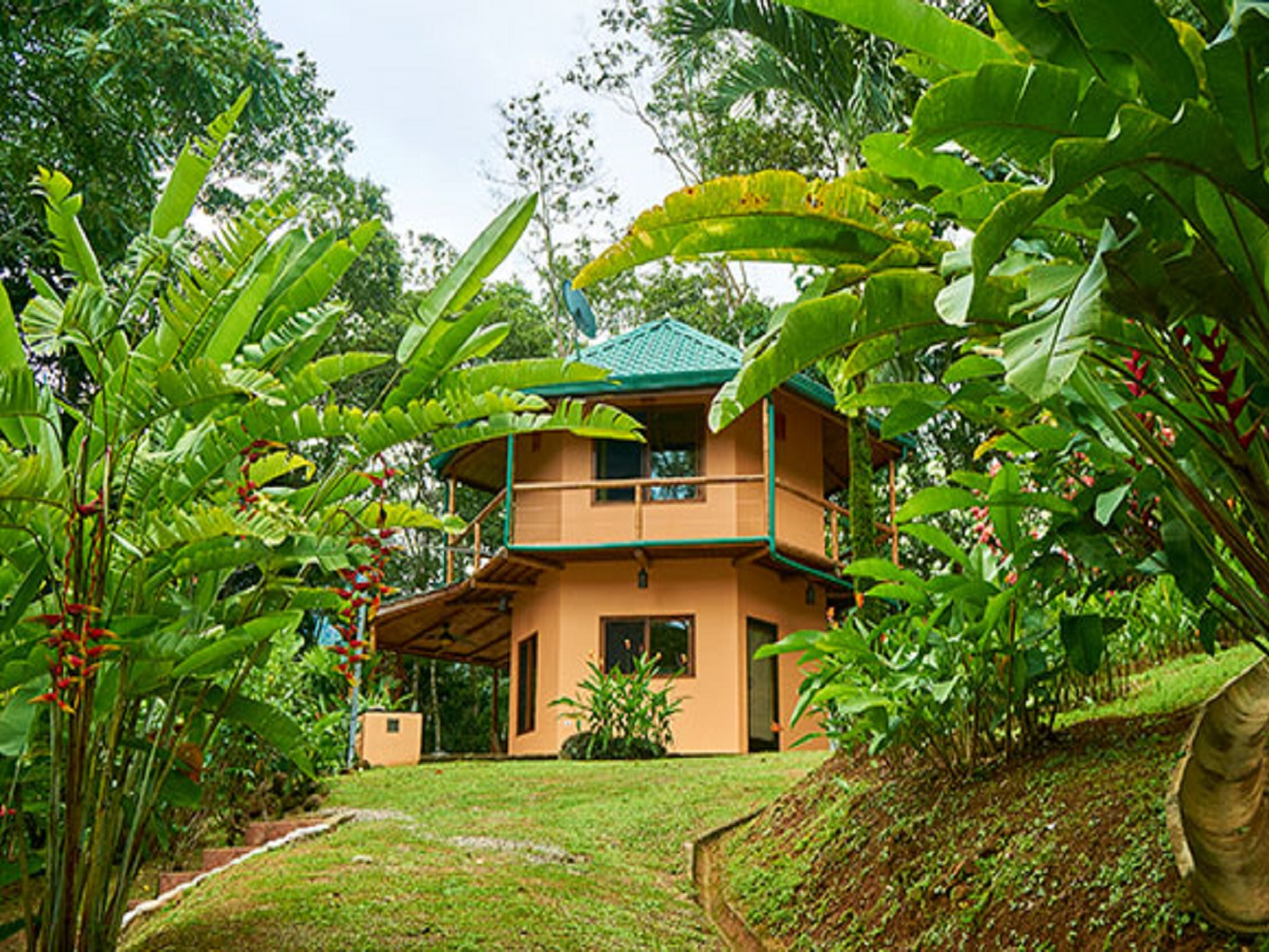 A group of palm trees at Manoas Luxury Camping & Villa Rentals.