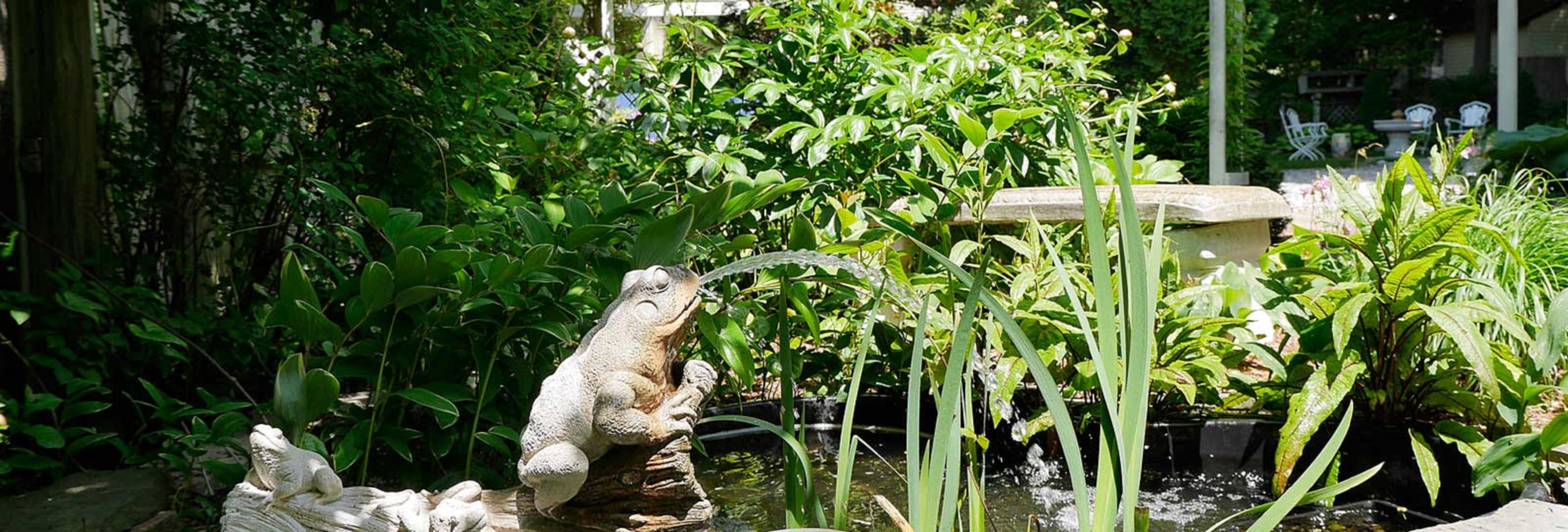 A frog sitting on a statue of a bear at Marywood Manor.