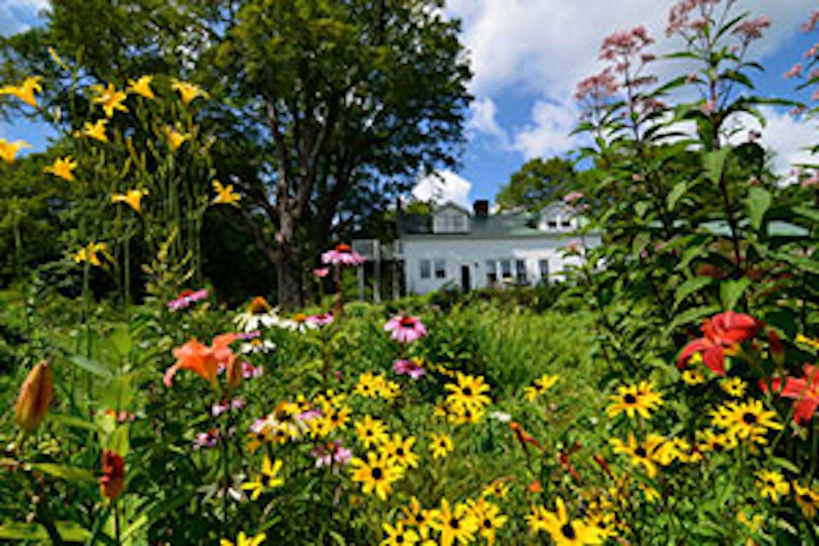 A close up of a flower garden at Flower Hill Farm Bed & Breakfast Retreat.