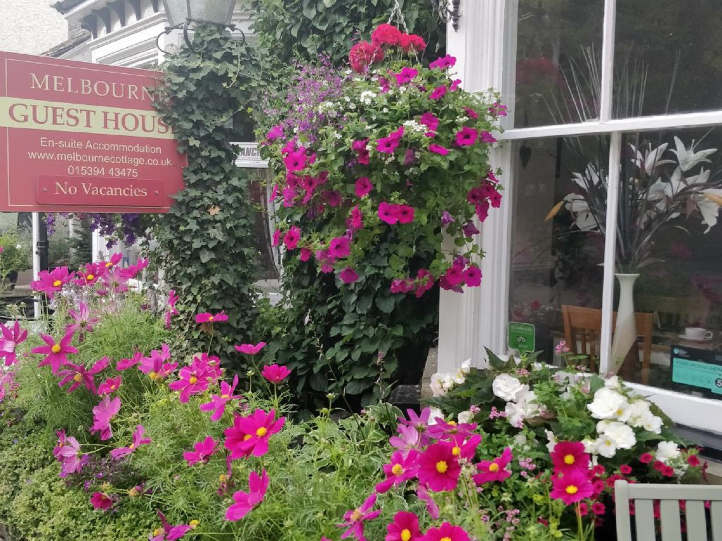 A close up of a flower garden at Melbourne Cottage Guest House.