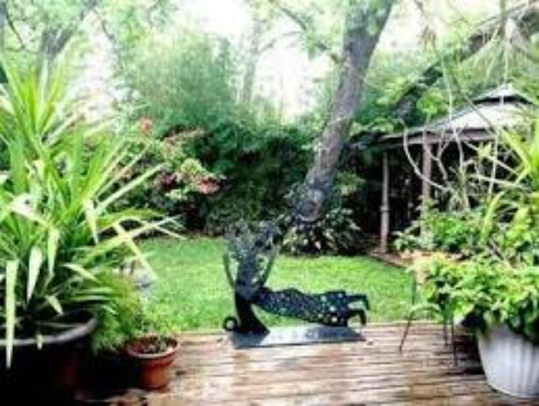 A green plant in a garden at Casita Corazon.