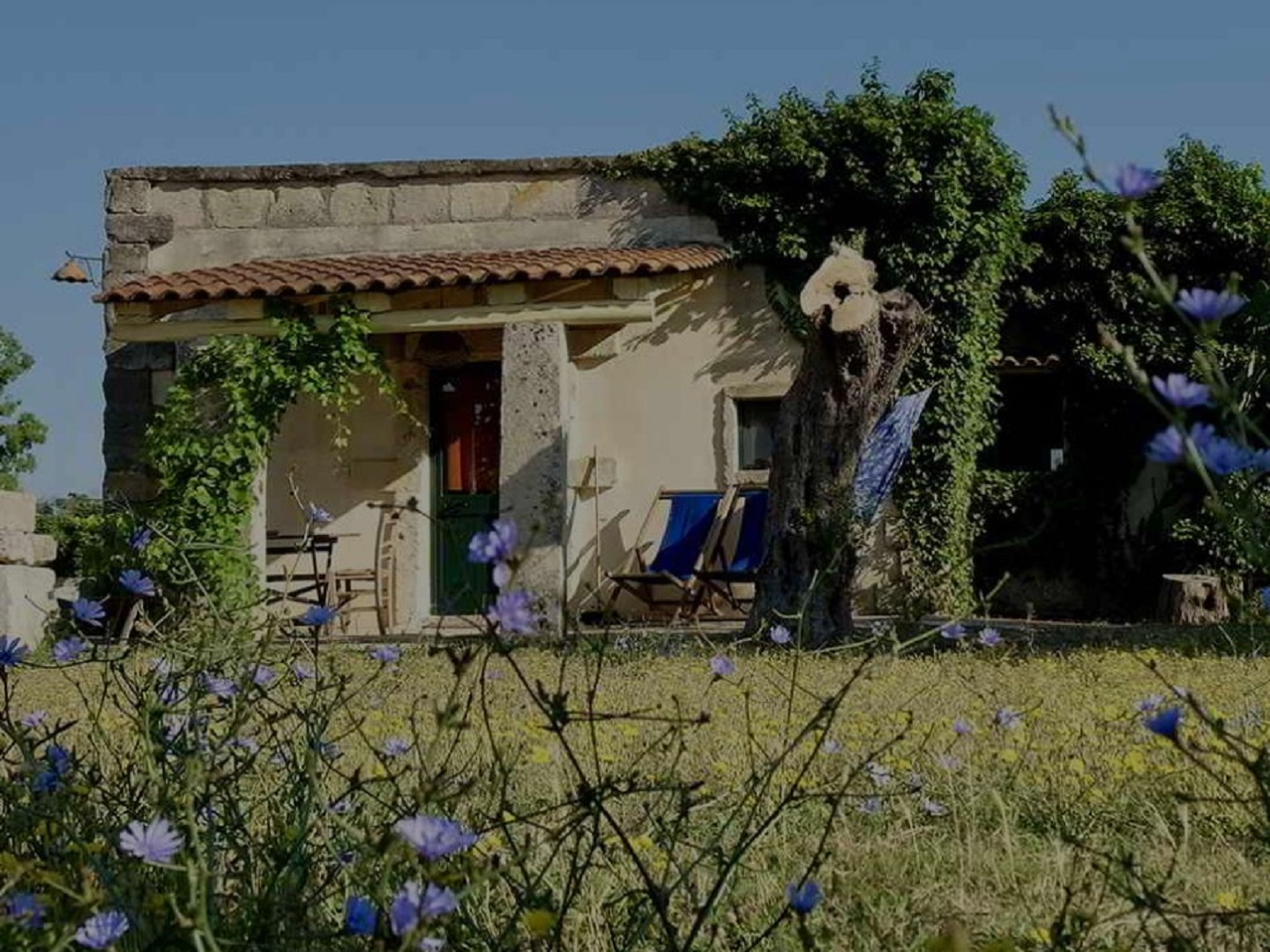 A house with trees in the background at Agriturismo Masseria Sant'Angelo.
